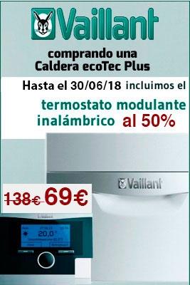 Promocion Vaillant con Calormatic al 50%